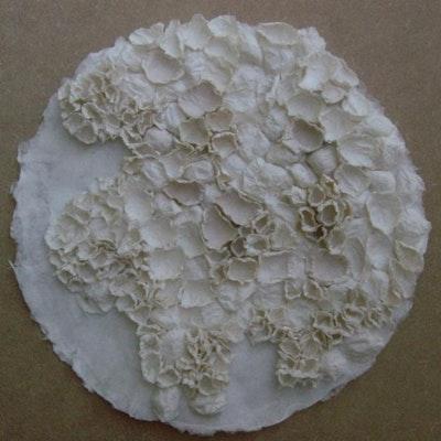 White Lichen 2